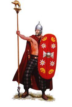 A Celtic Standard Bearer