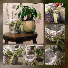 Glass Vase, Creations, Plants, Home Decor, Homemade Home Decor, Flora, Plant, Decoration Home