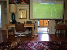 """93rd minute of the World Cup final as seen in Bernal Heights, San Francisco.. #timeofthegame """"…with Jones the cat who's rooting for Germany"""""""
