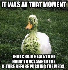 Icu Nurse Humor, Rn Humor, Nurse Jokes, Medical Humor, Funny Medical, Icu Nursing, Nursing Notes, Funny Nursing, Nursing Major