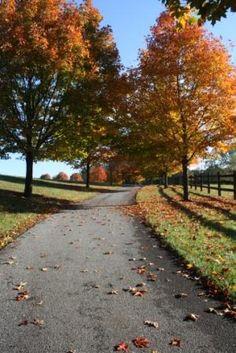 Wolf's Hollow County Park- Atglen, PA