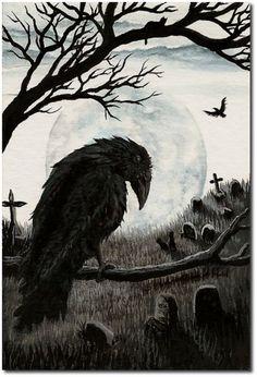 Watchful Eye of the Cemetery Warden-