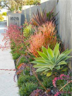 Side yard garden landscaping