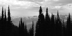 Top of Whistler