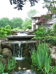 Amazing garden  we love to have one day.