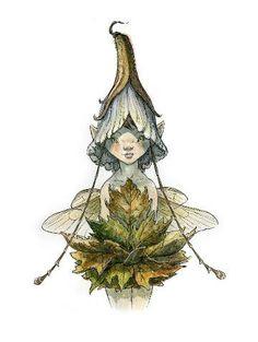 The Spiderwick Chronicles #fairy
