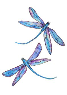 """""""Dragonfly Dance (Small Framed Watercolor)"""" by Linda Callaghan. Paintings for Sale. Dragonfly Drawing, Dragonfly Painting, Dragonfly Tattoo Design, Dragonfly Art, Butterfly Art, Tattoo Designs, Dragonfly Tatoos, Tattoo Ideas, Butterflies"""