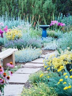 Create winding paths with pavers set in gravel bordered by native plants