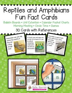 Reptiles & Amphibians Fact Cards (from Sallie Borrink Learning)