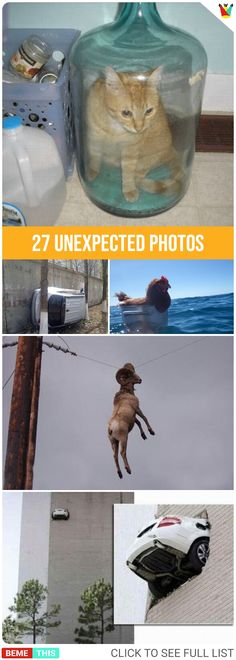 """27 Unexpected Photos That Will Leave You With Question """"How"""" #unexpected #funnypics #funnypictures #weird #bemethis"""