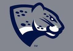 New Jaguar Head logo Soccer Logo, Basketball Posters, Sports Basketball, Soccer Motivation, New Jaguar, Volleyball Shirts, Minimal Logo Design, School Logo, Logo Concept