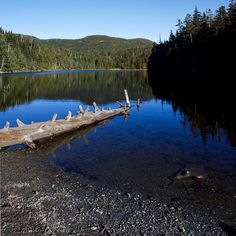 Vermont Hikes: Sterling Pond