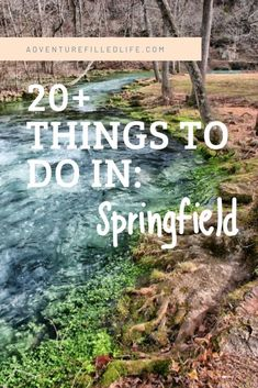 Springfield, Missouri is a city that is easy to overlook until you actually visit - and then you realize there are so many things to do in Springfield MO!
