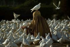 A very strong picture by Steve McCurry