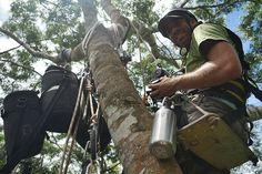 Michael Sanderson for BBC One Planet in Guatemala