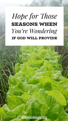 Hope For Gods Provision   Abby McDonald