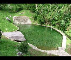 Absolutely Incredible Pool - Carlos Motta – Arquitetura