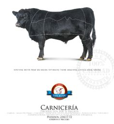 Campaña para carnicería, San Juan Qro.