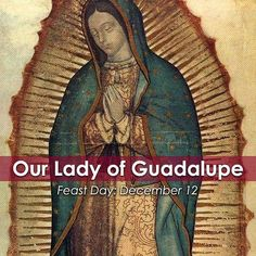 Join the Catholic Apostolate Center in commemorating the Feast Day of our Lady of Guadalupe!  #JuanDiego was a poor, Baptized Native American. On December 9, 1531, he was on his way to a nearby town to attend Mass in honor of Our Lady.  He was walking by a hill called Tepeyac when he heard beautiful music. A radiant cloud appeared and within it stood a young Native American maiden dressed like an Aztec princess. The lady spoke to him in his own language and sent him to the bishop of Mexico…