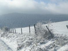 La Margeride, l'hiver. Photo F Bertel