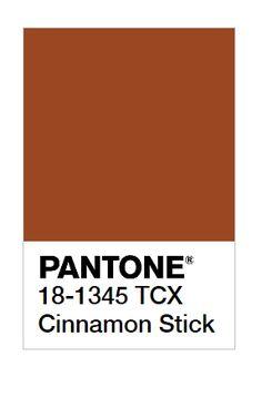 New York Fashion Week Spring / Summer 2020 Pantone Colors-Pantone Colours Cinnamon Stick - Brown Pantone, Pantone Color, Coral Fashion, Pantone 2020, Orange Painting, Mood And Tone, Blue Colour Palette, Color Trends, Cinnamon Sticks