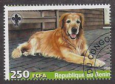 Dog Art Full Body Portrait Postage Stamp Old GOLDEN RETRIEVER Benin 2005 CTO