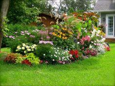 Inselbeet mit üppig-blühenden Blumen-besonderer Blickfang im Vorgarten