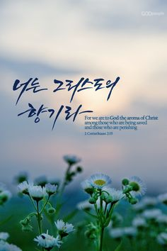 Bible Verse Wall Art, Bible Verses Quotes, Learn Korean, D Day, Great Words, Christ, Religion, Lettering, Life