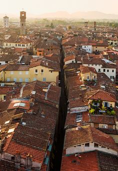 Lucca, Tuscany, Italy A walled city, given by Napoleon to his sister as a gift. It is as if you stepped back in time. Lucca Italy, Tuscany Italy, Bella Italia, Siena, Places To Travel, Travel Destinations, Renaissance Era, Walled City, Wonderful Places