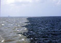 Gulf of Mexico - Mississippi river