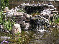 Bassins de jardin: le pôle d\'attraction d\'un jardin