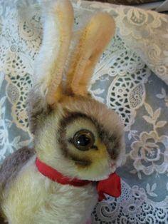 steiff bunny 86.00