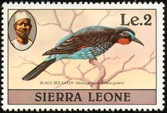 Black Bee-eater stamps - mainly images - gallery format