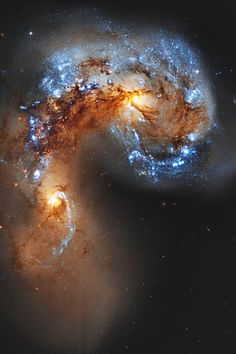 hashpe: NGC 4038 Colliding Galaxies - Hubble Legacy Archive   ©   HP