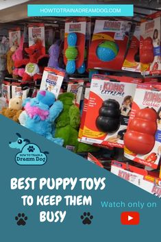 Best Puppy Toys to Keep Them Busy // Want your puppy to stay out of trouble while they play with the best puppy toys! In this video all about dog toys and puppy toys you'll discover which interactive dog toys are the best, which Kong toys are my favorite, which toys are for heavy chewers, and which toys your puppy shouldn't play with. Homemade Dog Toys, Diy Dog Toys, Best Dog Toys, Best Puppies, Toy Puppies, Dog Accesories, Kong Toys, Interactive Dog Toys, Training Your Puppy