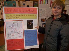 Science Fair project Gr.4