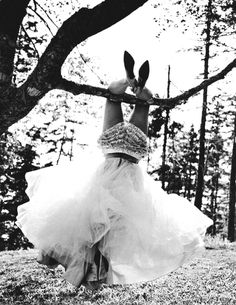 Silk, tulle, ruffles, lace & heels Girly girl on the outside.tomboy for reals. Black White Photos, Black And White Photography, Hbd To Me, Mood, Sandra Bullock, Wild And Free, Make Me Smile, Dream Wedding, Crazy Wedding