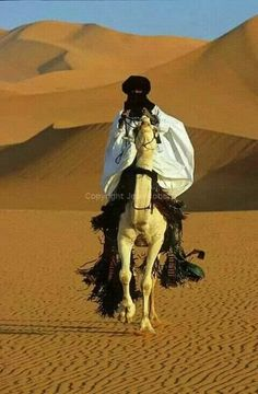 Ahmed is a Touareg from Djanet in Algeria. he likes running on his tall white camel in the sans dunes nearby the town of Gat