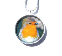 Robin Pendant, Bird Necklace, Garden Bird, Handmade Jewelry, Original Photography, Bird Lover's Gift, Wearable Picture Art, Gift For Her