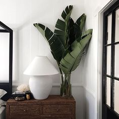 TROPICAL LUXE  Perfect bedside table styling via @harolds_finishing_touches…
