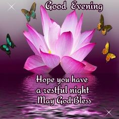 Good Night Everyone, God Bless You! Good Evening Photos, Good Evening Wishes, Evening Greetings, Good Night Wishes, Good Morning Inspirational Quotes, Good Night Quotes, Inspirational Message, Morning Verses, Evening Quotes