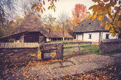 little house.little garden.little autumn.