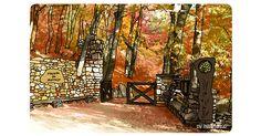El Hayedo de Montejo, un precioso bosque de hayas cerca de la ciudad de Madrid.