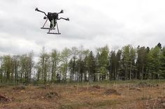 Tree-planting drones can sow 100,000 seeds a day | Industries