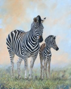 Zebra mare and foalHorse painting by David Stribbling