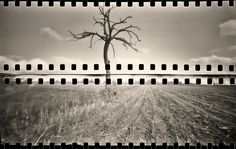 - zip - ;/) pinhole | Flickr - Photo Sharing!