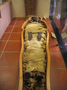 Vatican Museum Mummy #TuscanyAgriturismoGiratola