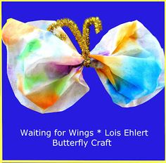 Butterfly Craft & Virtual Book Club (Lois Ehlert)