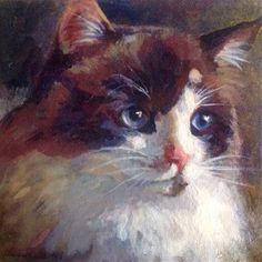 """Daily Paintworks - """"RagaMuffin Shayna"""" - Original Fine Art for Sale - © Judy Downs Pretty Cats, Cute Cats, Illustrations, Illustration Art, Cat Diseases, Cat Paintings, Raining Cats And Dogs, Cat Wall, Fine Art Gallery"""