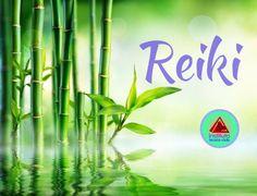 O Reiki tem como símbolo o bambu que significa simplicidade, resistência, vazio, retidão e perfeição, pode representar, metaforicamente, o funcionamento da energia Reiki.  O Bambu é forte, servindo para construção de embarcações, móveis e construções, ou seja, todos que receberam o Reiki tendem a ficar fortes e resistentes.  Conheça a Formação Profissionalizante em Reiki Tradicional Usui - Nível I ao Mestrado. Saiba mais em: http://www.reikitotalpro.com/ http://www.reiki.global/  Solicite…